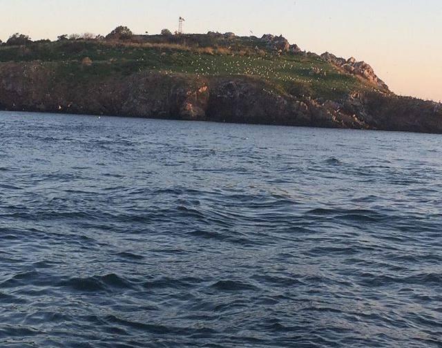 Neandros Adası