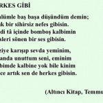 herkes 1