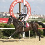 TSYD Ankara koşusu
