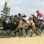 TSYD Ankara koşusu 2